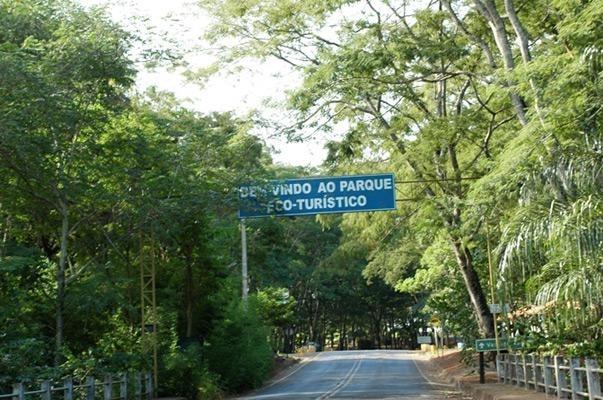 MORADOR DE VALENTIM GENTIL COLIDE CONTRA ÁRVORE